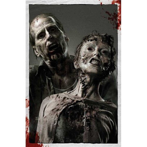 The Walking Dead Poster TV E 27 x 40 Inches - 69cm x 102cm Andrew Lincoln Emma Bell Sonya Thompson Steve Warren Jeryl Prescott IronE Singleton